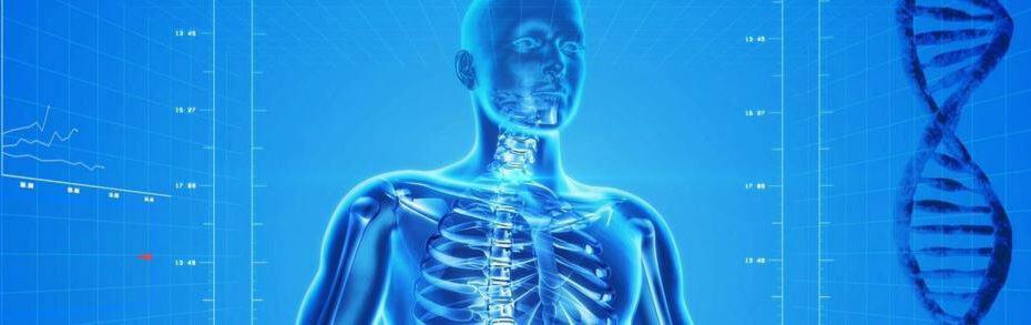 ilustracion investigacion estudio cuerpo humano